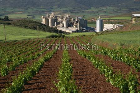 przemysl bran gospodarstwo rolnictwo architektura winnice