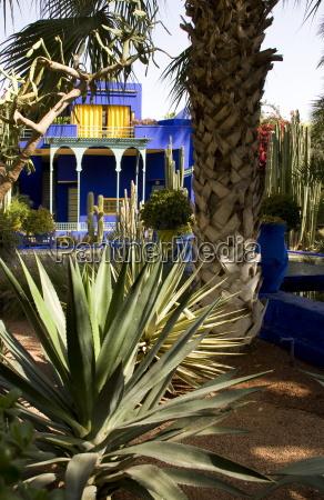 niebieski jazda podrozowanie architektonicznie drzewo afryka