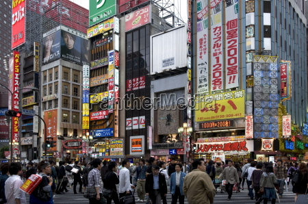 neon signs light up the kabukicho