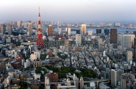 aerial view of metropolitan tokyo and