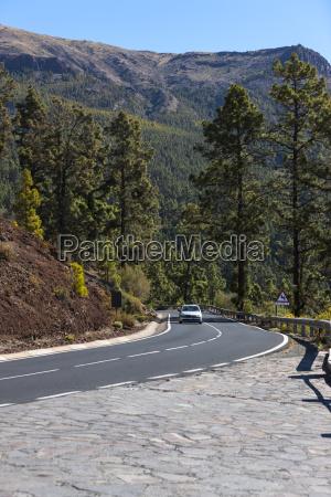 jazda podrozowanie drzewo ruch drogowy transport