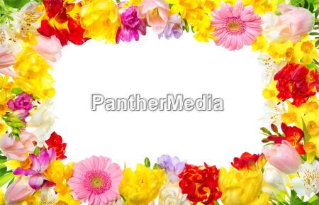rama wykonana z kolorowych kwiatow z