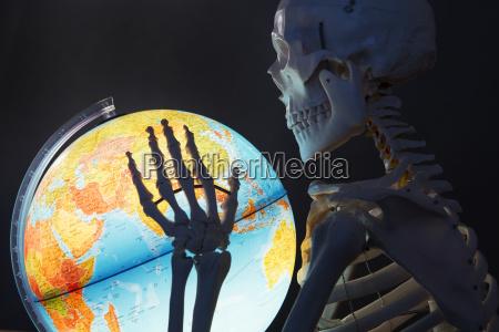 szkielet gospodarstwa globu zamknij