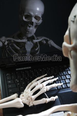 szkielet odzwierciedlajac w monitorze komputera