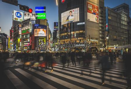 japan tokyo shibuya people crossing the