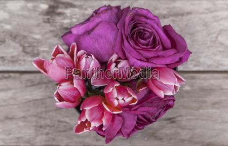 tulipany, i, róże - 21519227