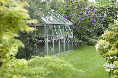 szklarnia w back garden