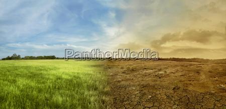 krajobraz pola lakowego ze zmieniajacym sie