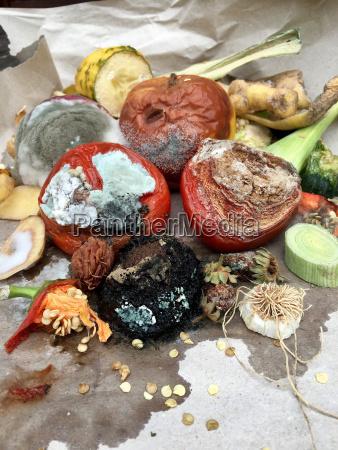 jablka jablko warzywo kompost nudny kupa