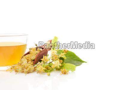 herbata lisc zdrowie zdrowia zwolniony medycznych