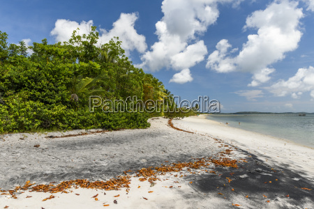 scenery of tropical beach peninsula de