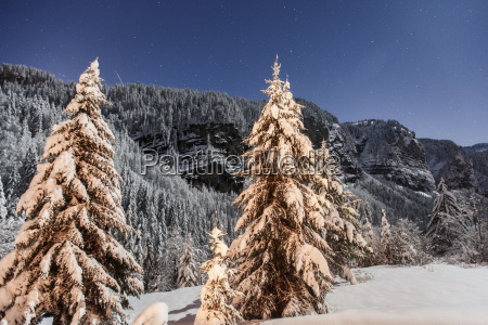 winter landscape with mountain forest in