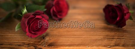 piekne czerwone roze na walentynki