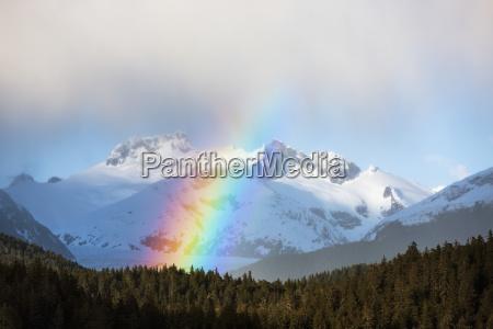 rainbows i okresowe prysznice w las