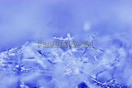 azul close up detalhe closeup inverno