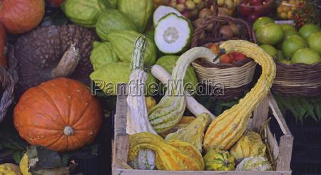 jesienne, warzywa, na, targu, farmerskiej - 23894720