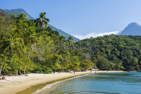 tropical beach with palm trees in