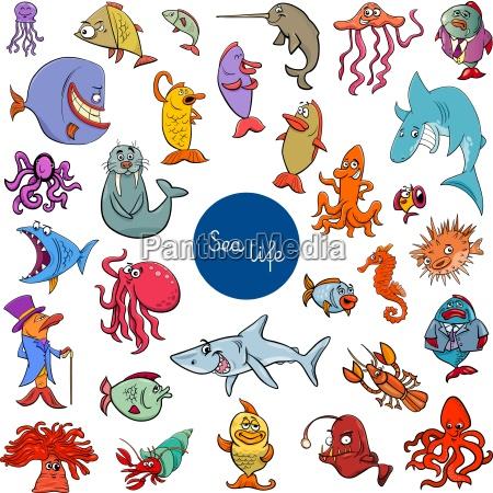 kreskowka morze zycie zwierzat znakow kolekcji
