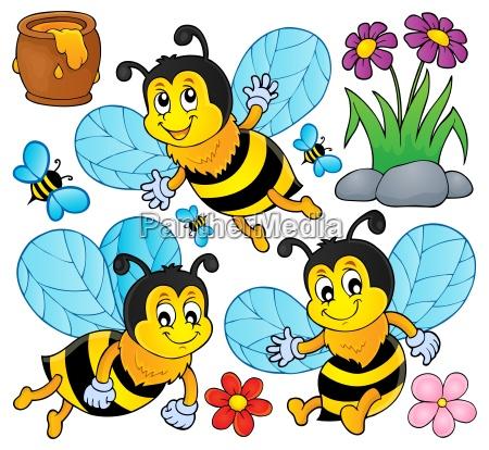 owad owady insekty tragflaeche skrzydlo pszczoly