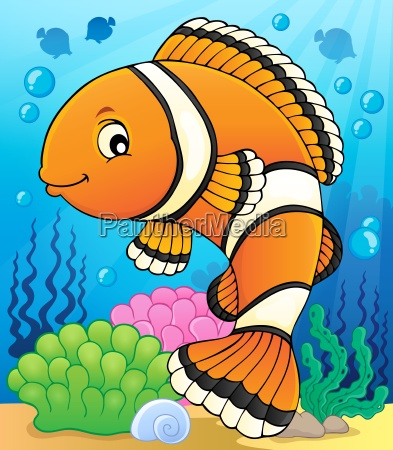 clownfish topic image 2