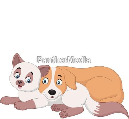 kreskowka kot i pies relaksujacy