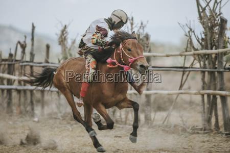jockey jazda konna kon wyscigowy podczas