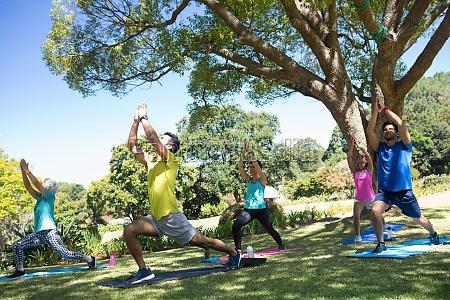 grupa osob wykonujacych joge w parku