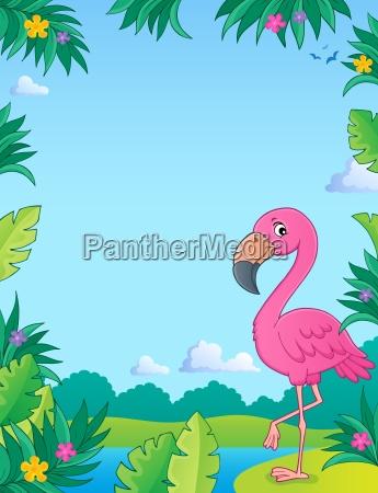 flamingo topic image 2