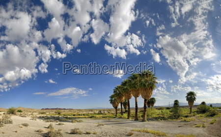 obszarow wiejskich obszar wiejski park narodowy