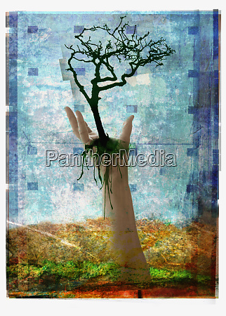 reczne trzymanie drzewa nad ziemia