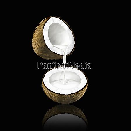 kokosmilchdie von einer kokosnuss zur haelfte