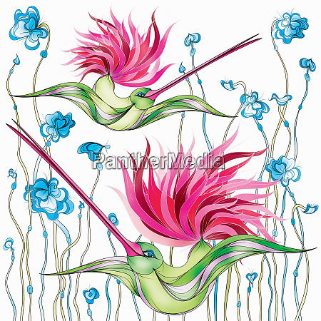 flamboyant hummingbirds with pink tails flying