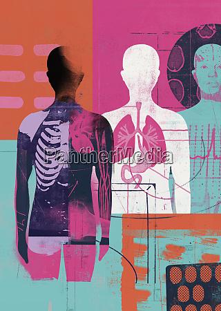 medyczny montaz ludzkiej anatomii