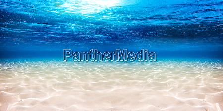 podwodne blekitne oceanpiaszczyste tlo