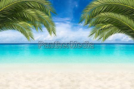 raj plaza tlo