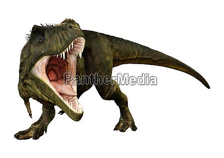 renderowanie 3d tyrannosaurus rex na bialym