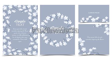 vector kwiaty biale