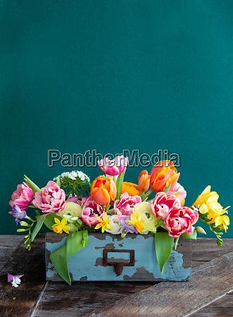 kolorowe wiosenne kwiaty