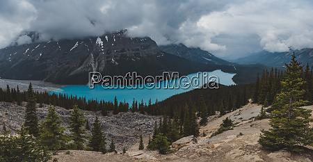 malowniczy krajobraz z jeziorem peyto i
