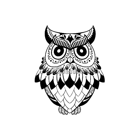 owl bird sign symbol logo emblem