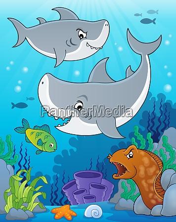shark topic image 5