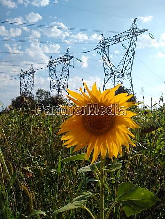 themenbild atomkraftwerk fessenheimfrance