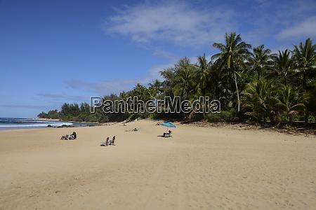 sunbathers, w:, ha'ena, state, park, ke'e, beach - 27340428