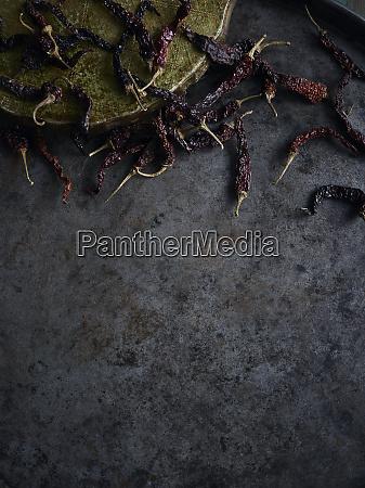 rustykalne martwe zycie z rozproszonymi suszonymi
