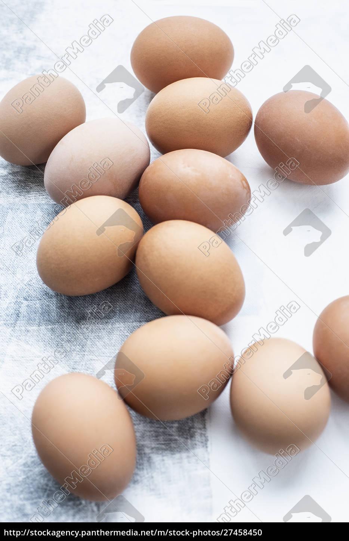 still, life, of, a, dozen, eggs - 27458450