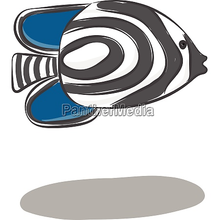 clipart of the zebra fish with
