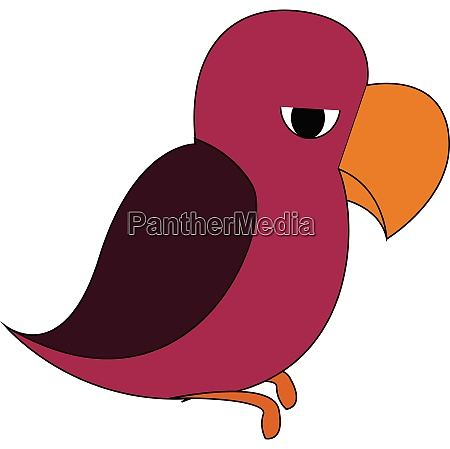 mad parrot vector or color illustration