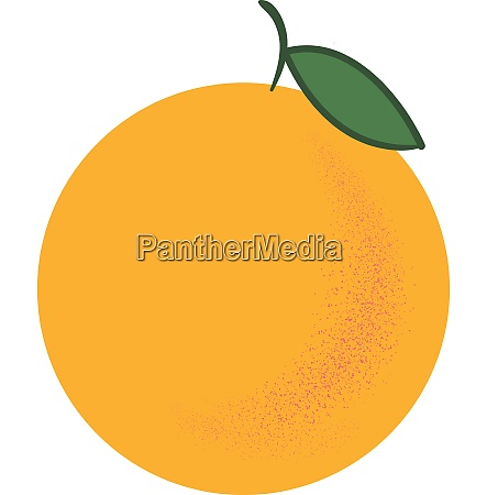 orange in yellow color vector or