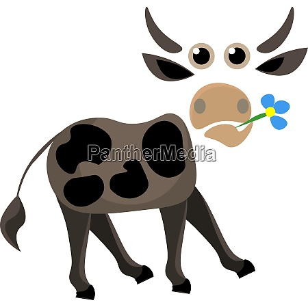 portrait of a cow holding flower
