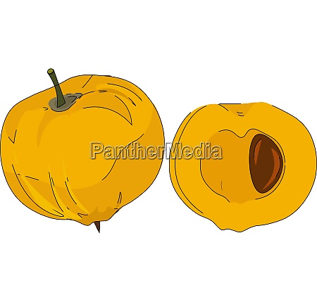 cartoon yellow egg fruit vector or